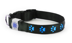 NIGHT SCOUT DOG COLLAR  4PC